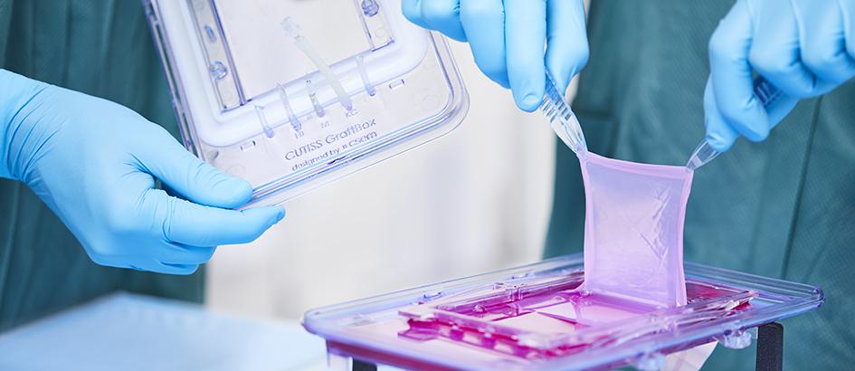 Bild: zVg/CSEM; Die personalisierten Hautgewebetransplantate von Cutiss sollen die Behandlung schwerer Hautdefekte revolutionieren.